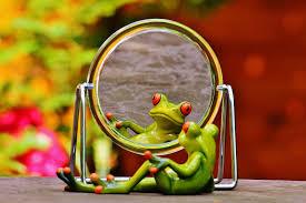 zrcadleni