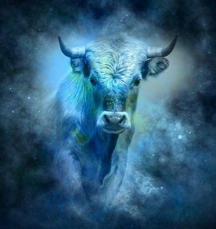 zemské znamení Býka