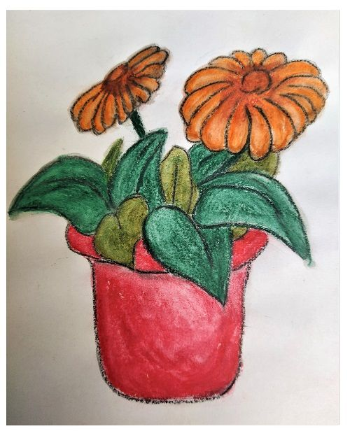kvetina, kytky, rust avyvoj