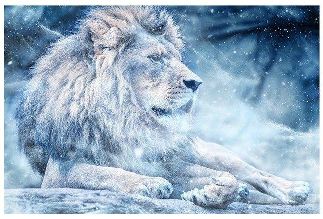 Vlci uplnek ve znameni Lva