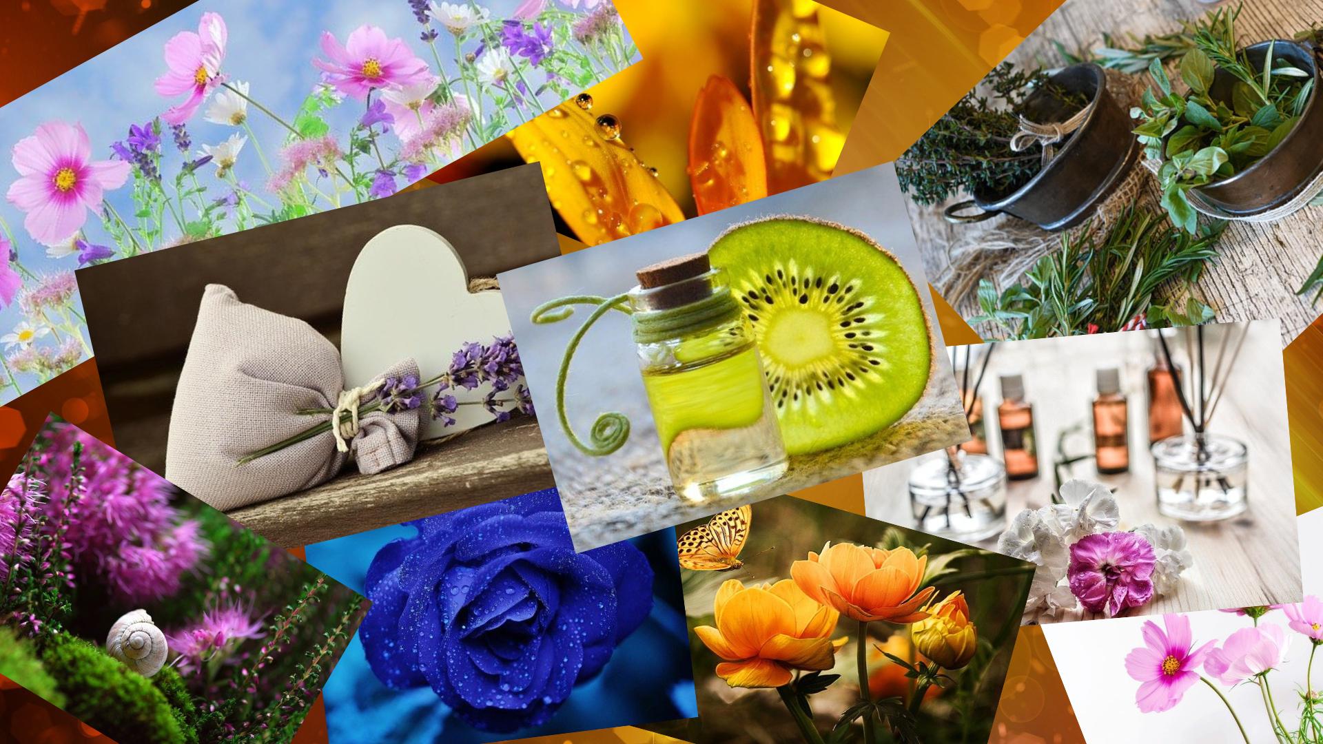 vune, bylinky, aromatepie